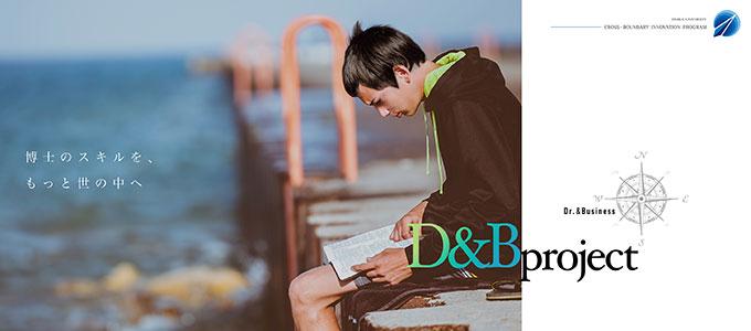 D&B project